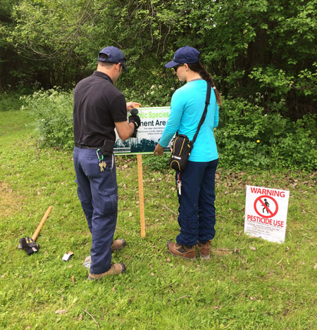 Posting notification signs before treating invasive plants.