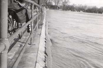View of West London Dyke during the April 1947 Flood
