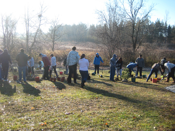 Local students plant native trees and shrubs along the Medway