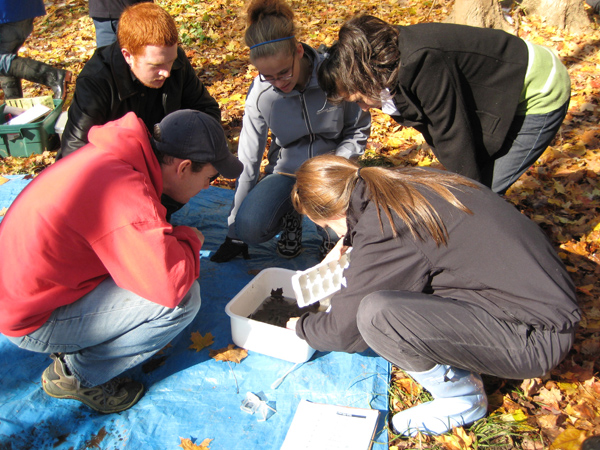 Students participate in the watershed report card program
