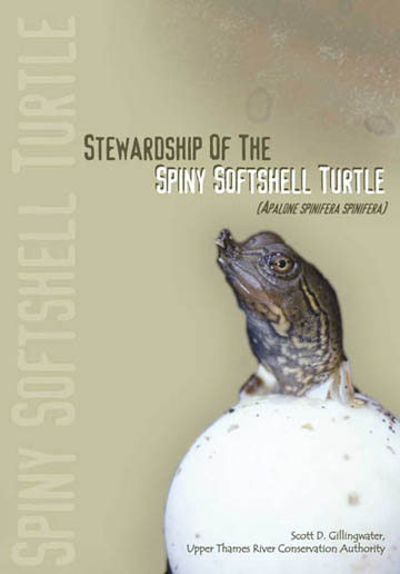 Spiny Softshell Turtle Guide cover